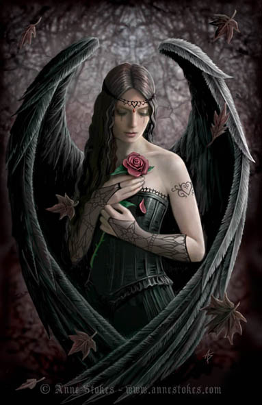 http://img0.liveinternet.ru/images/attach/c/0/45/234/45234984_Angel_Rose_by_Anne_Stokes.jpg