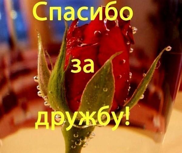 http://img0.liveinternet.ru/images/attach/c/0/45/400/45400272__65533_65533_65533_65533_65533_65533_65533__65533_65533__65533_65533_65533_65533_65533_65533.jpg