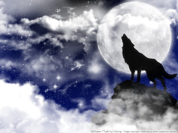 волки  и оборотни.