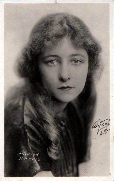Mildred Harris salary
