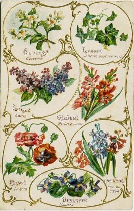 Язык цветов старинные открытки