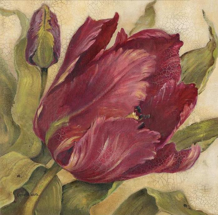 Название: Открытый тюльпан Год / месяц: 2007 Издательство: Anchor Формат:jpg Размер: 5,84Мб Схема для вышивки...