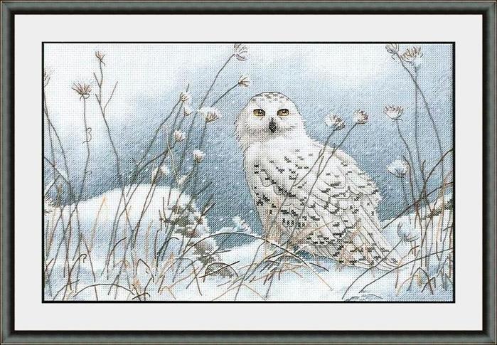 Dimensions схема для вышивки крестом.  Дизайн вышивки сделан с картины.  Northwind Owl/Полярная сова.