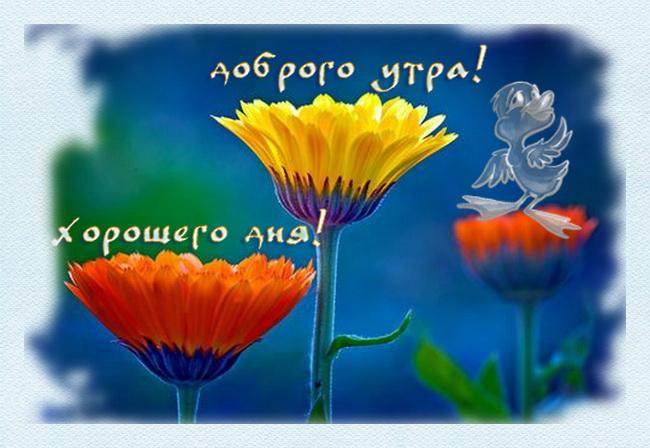 http://img0.liveinternet.ru/images/attach/c/0/47/826/47826037_1250952977_1210136827120780497912075593756100339.jpg