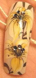 Одним из самых популярных и уже привычных направлений дизайна ногтей является нанесение рисунков на ногти различными...