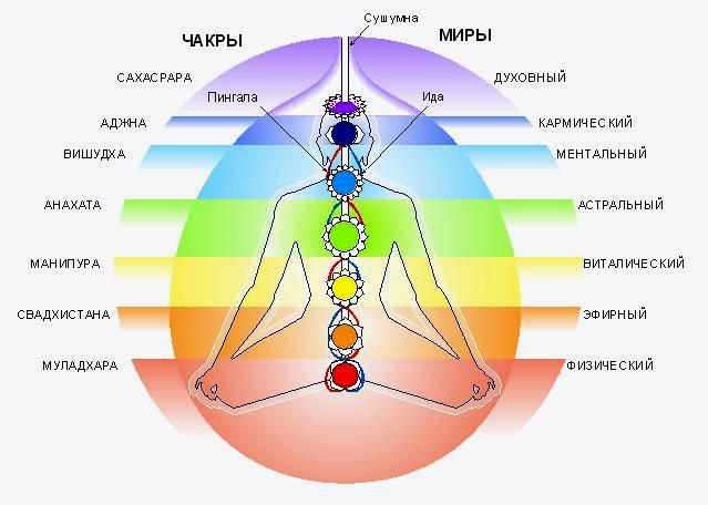 Чакры выделяются в теле, как сферы излучающие энергию, от которых отходят лепестки - ближайшие к ним участки...