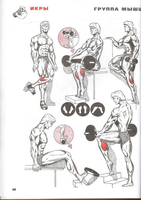 Как в домашних условиях накачать икроножные мышцы