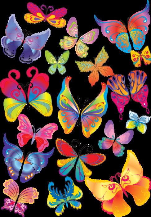 Картинки бабочек и цветов нарисованные 2