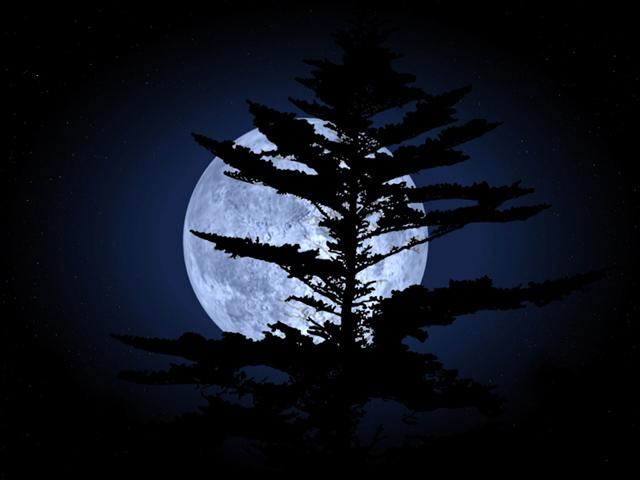 с детства пятна на луне мне кажутся силуэтом танцующей обнаженной красавици, или ведьмой летящей на метле. А Вам?