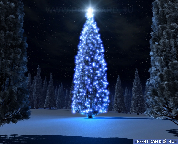 Картинки на тему зимы нового года и