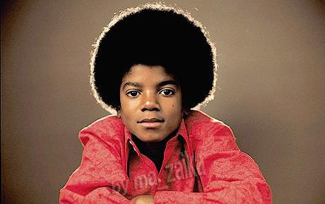 Украинское село Октябрьское желает быть переименовано в честь Майкла Джексона