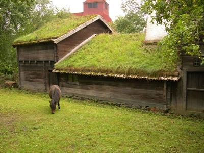 крыша из дёрна