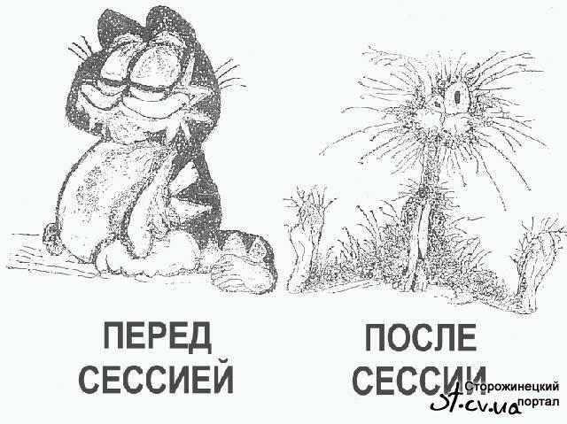 Так мы видим препода и как преподы видят нас)
