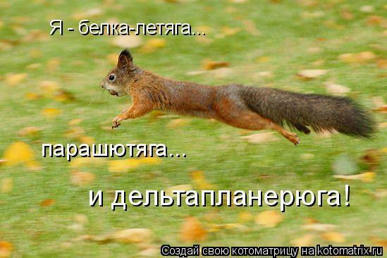 http://img0.liveinternet.ru/images/attach/c/1//49/917/49917301_B1.jpg