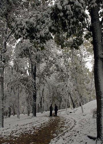 Львов засыпан снегом (фото)