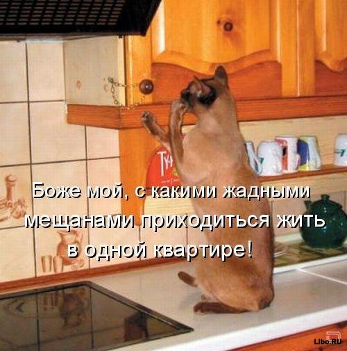 ☕ PĻĀPĀTAVA / БОЛТАЛКА ОБО ВСЕМ! - Page 3 50110044_meschane