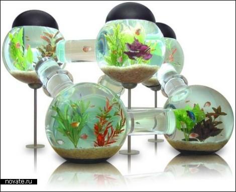 Aquarium1 (470x383, 42Kb)