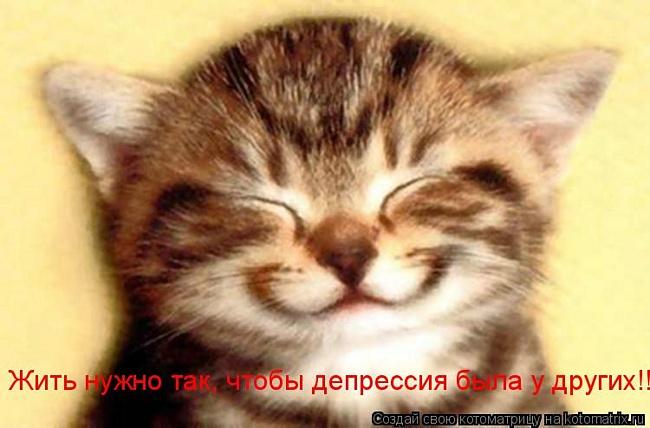 http://img0.liveinternet.ru/images/attach/c/1//50/468/50468128_kot.jpg
