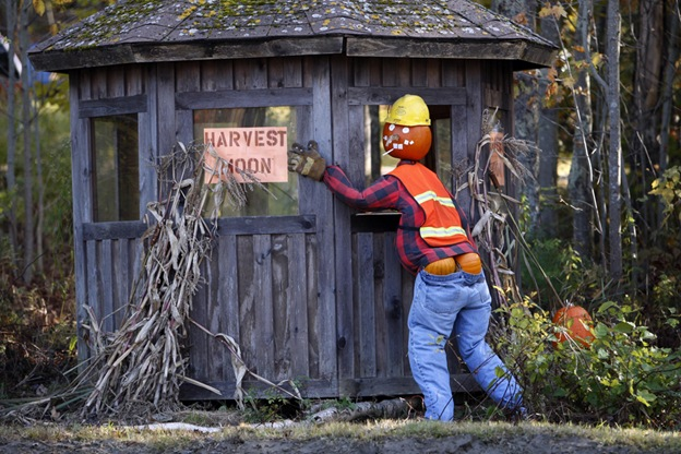 Хэллоуинский манекен стоит у дороги на потеху водителям 23 октября в Фрипорте, штат Мэн