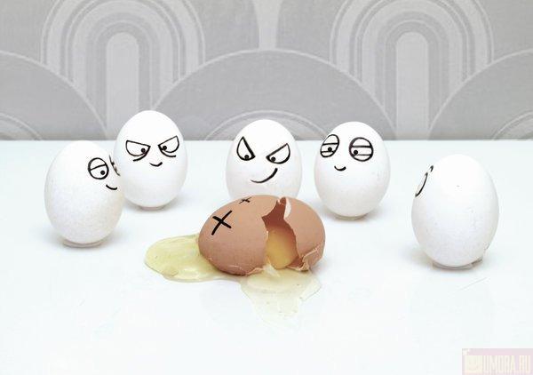 месть яиц бывает порой страшна