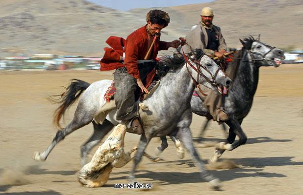 Афганские всадники играют в Buzkashi.