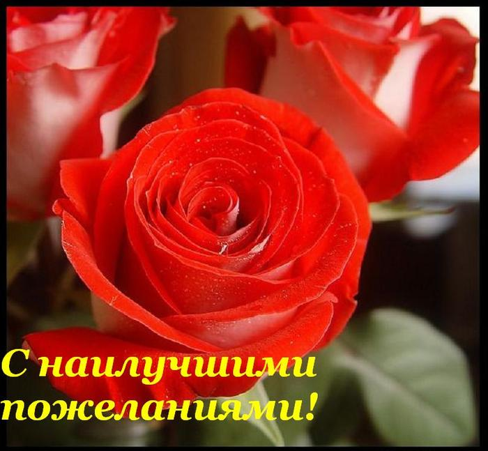 45905338_s_nailuchshimi_pozhelaniyami (700x647, 56Kb)