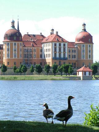 Замок Морицбург (Schloss Moritzburg)-часть 1 13587