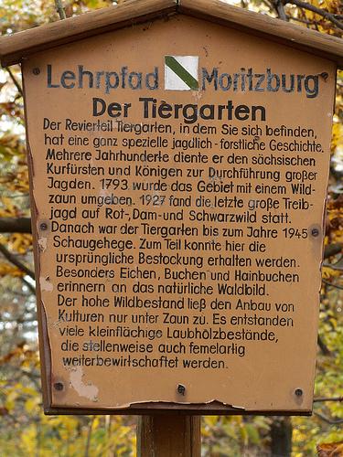 Морицбург-часть 2 74529