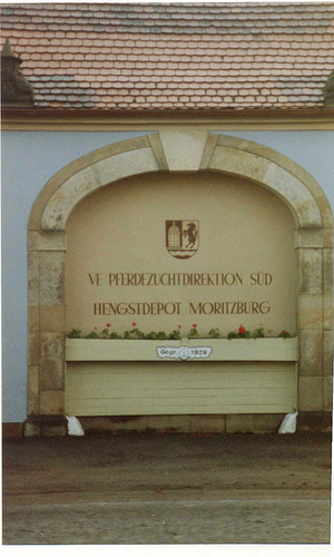 Морицбург-часть 2 58118