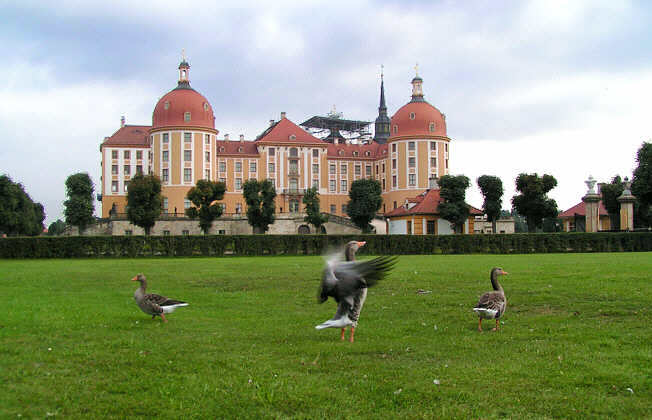 Замок Морицбург (Schloss Moritzburg)-часть 3 32067