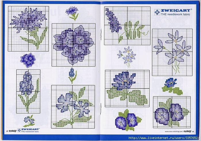 Голубые миниатюрные цветы