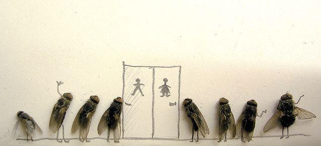 мухи в очереди