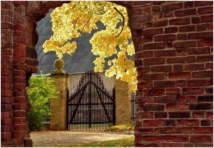 Монастырский парк Альтцелла (нем. Klosterpark Altzella) 61171