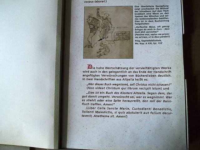 Монастырский парк Альтцелла (нем. Klosterpark Altzella) 87541