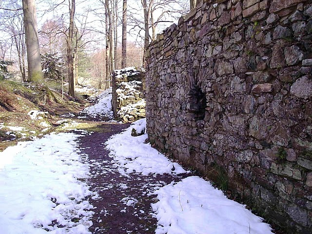 Монастырский парк Альтцелла (нем. Klosterpark Altzella) 89630