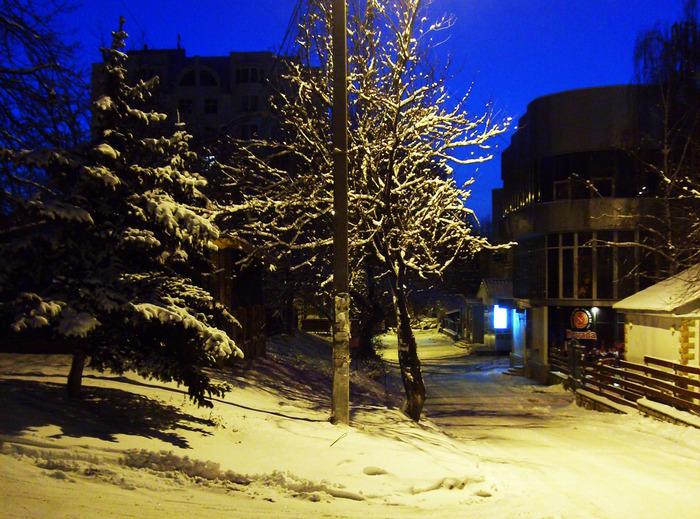 рышкановка, кишинёв, утро, зима, ель