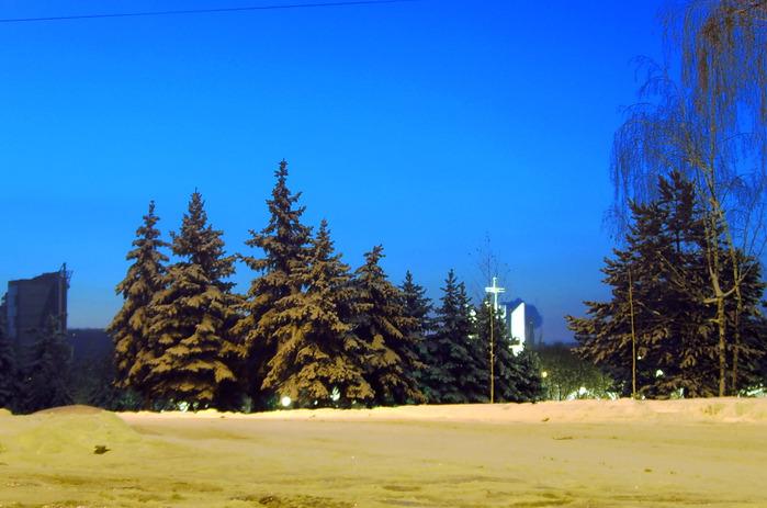 ёлки ёлки, парк афганцев, рышкановка, кишинёв