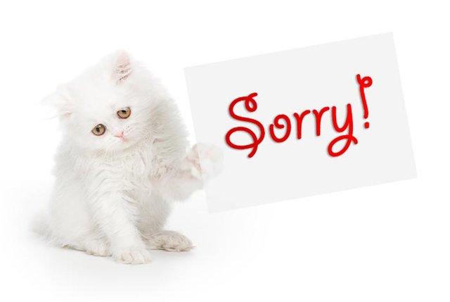 простите нас: