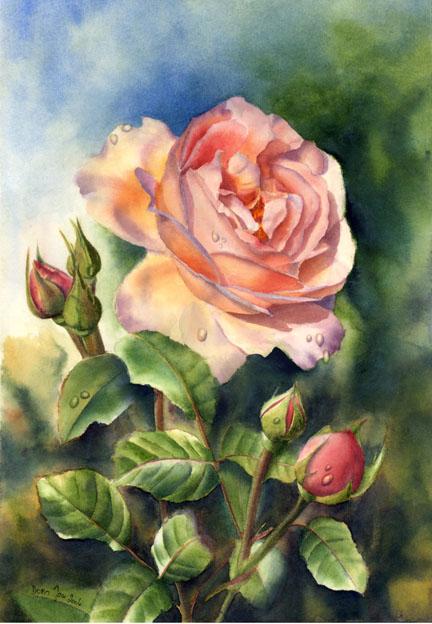 роза стих водолей