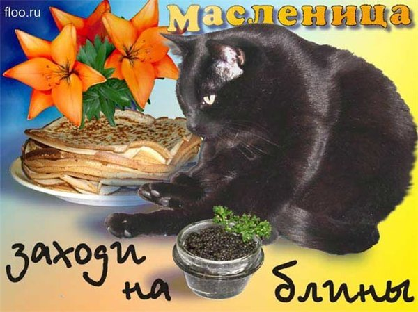 http://img0.liveinternet.ru/images/attach/c/1//55/33/55033645_maslenica_1.jpg