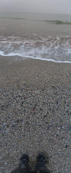 море панорама, берег моря