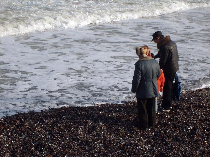 дедушка и внуки на море