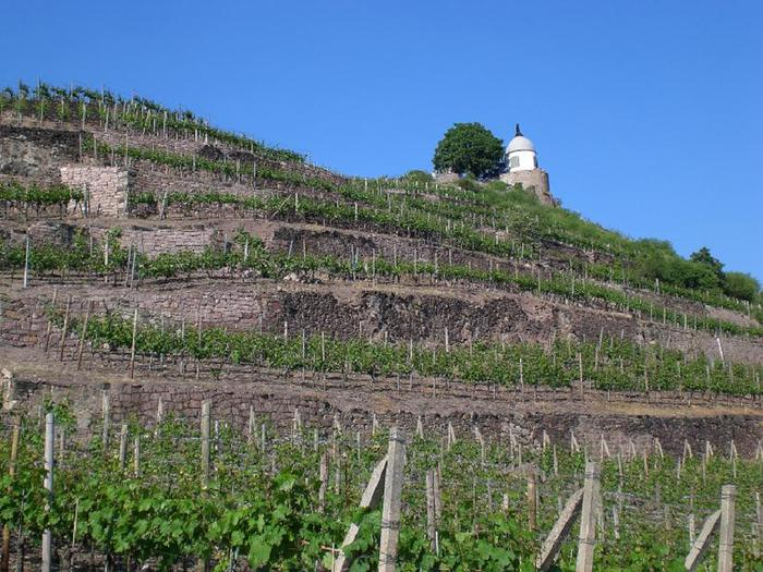 Замок Вакербарт (нем. Schloss Wackerbarth) 46338