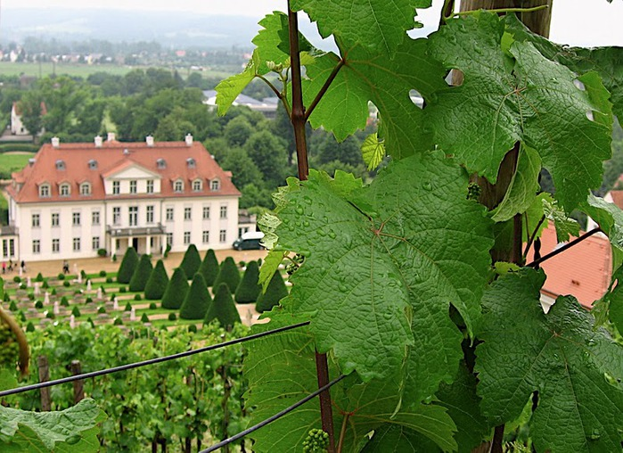 Замок Вакербарт (нем. Schloss Wackerbarth) 73273