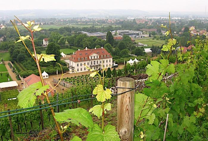 Замок Вакербарт (нем. Schloss Wackerbarth) 91716