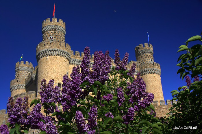 Замок в Мансанарес Эль Реал 66741