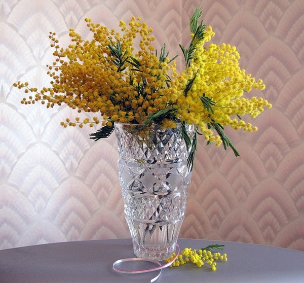 букет мимоза в вазе (600x558, 102 Kb)