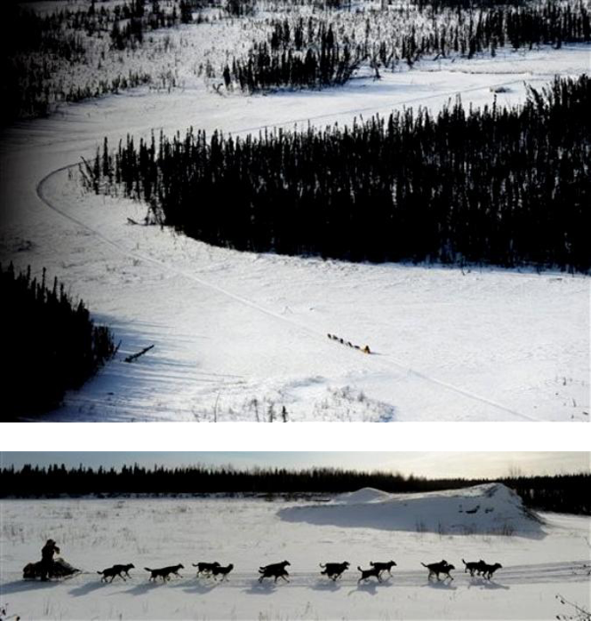 Гонка на выживание 'The Iditarod Trail Sled Dog Race 2010' в заснеженных штатах