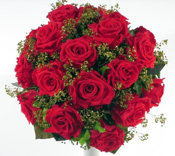 розы (600x536, 96 Kb)