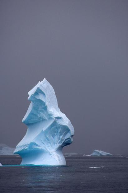 Снимки айсбергов у берегов Антарктиды.